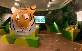 Save Sumatran Tigers with Greenpeace